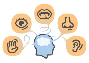 visual-sensory-processing-disorder-1